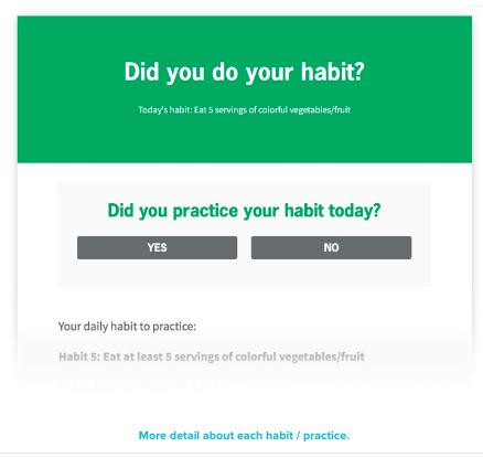 daily habit checks